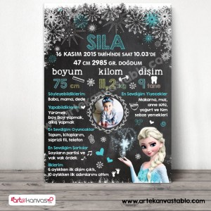 1 Yaş Doğum Günü Panosu Elsa Frozen Tema 083