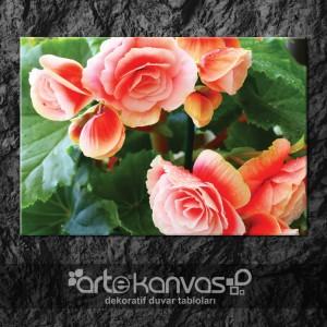 Çiçekler Kanvas Tablo 4