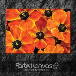 Çiçekler Kanvas Tablo 5
