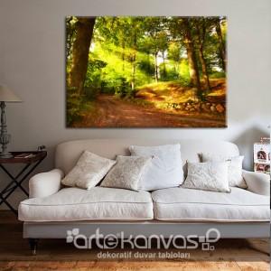 Orman Yolu Kanvas Tablo