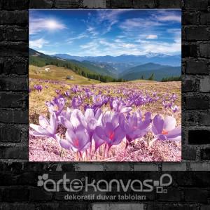 Dağ Çiçekleri Kanvas Tablo