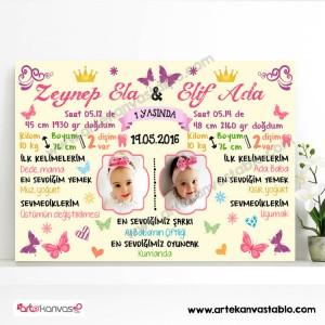 1 Yaş Doğum Günü (İkiz Bebek) Anı Panosu 95