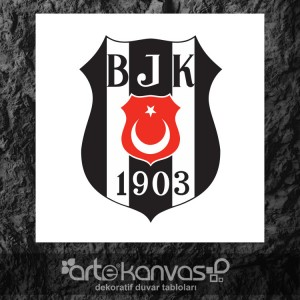 Beşiktaş Kanvas Tablo